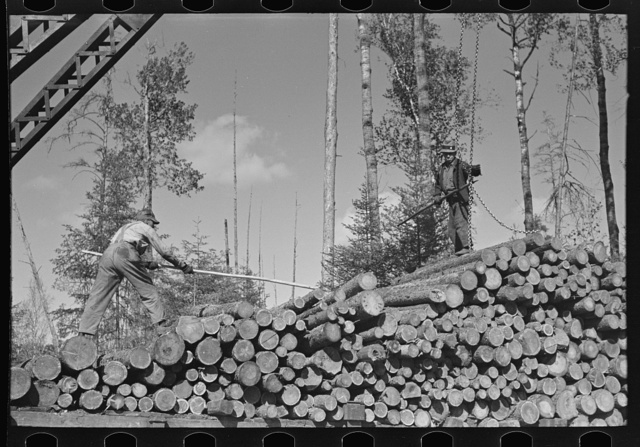 Pushing pulpwood into position while loading car at camp near Effie, Minnesota