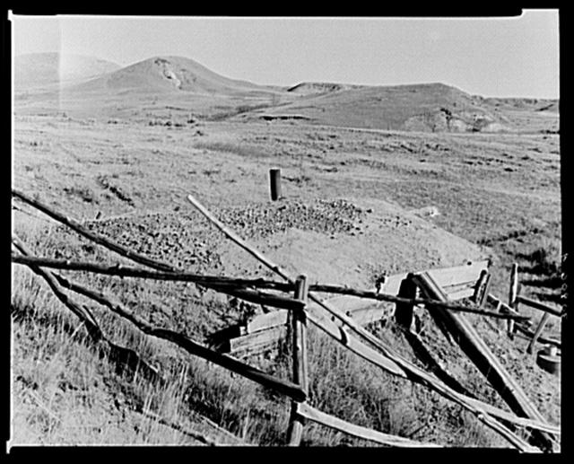 """Roof of """"Hominy"""" Thompson's shack. Sheridan County, Montana"""