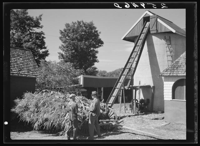 Silo on farm. Eden Mills, Vermont