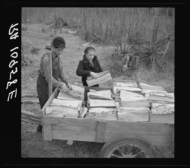 Son and daughter of Lon Allen's loading firewood on the trailer for delivery to the customer. Near Iron River, Michigan