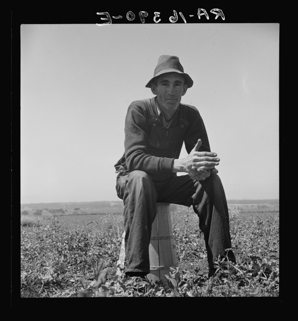 Strawberry grower from Oklahoma near Judsonia forced to join the migratory workers in California for the season because the 1936 drought caused a shortage of plants