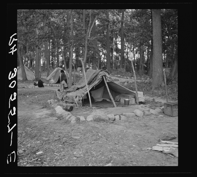 Tent of Indian blueberry picker. Littlefork, Minnesota