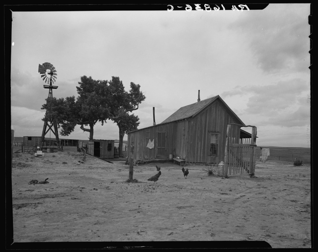 Texas tenant farmer's house. He operated this farm on thirds and fourths; that is, he supplies teams and tools, feed and seed to the owner's land. He has made no crop for four years but survives because of government checks for participation in crop reduction program. He has farmed for twenty years but plans to abandon farm in fall of 1937