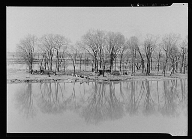 The home of an island farmer on the Illinois River near Ottawa, Illinois. Note graveyard on the opposite bank
