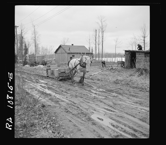 The roads are so bad to the transient camp at Hagerman Lake, Michigan, that it is necessary to haul supplies by mud sled for the last quarter mile. The camp has no telephone system and no resident doctor