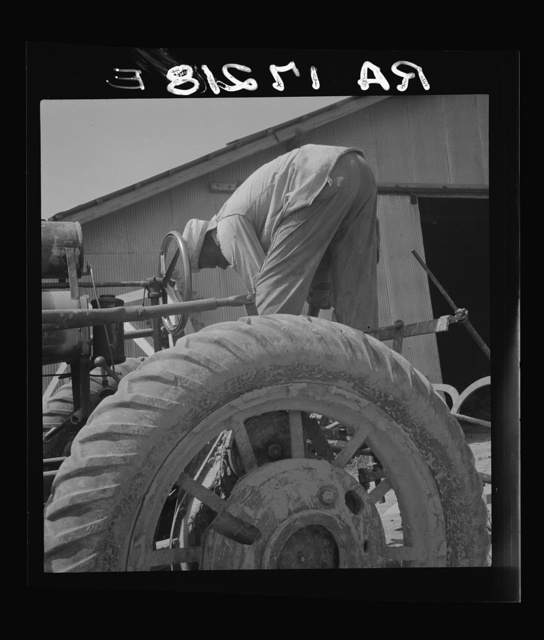 The tractor driver is colored. His wages when he works is one dollar and fifty cents a day as long as there is daylight. Aldridge Plantation, Mississippi