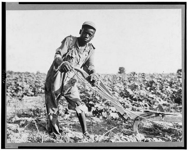 Thirteen-year old sharecropper boy near Americus, Georgia