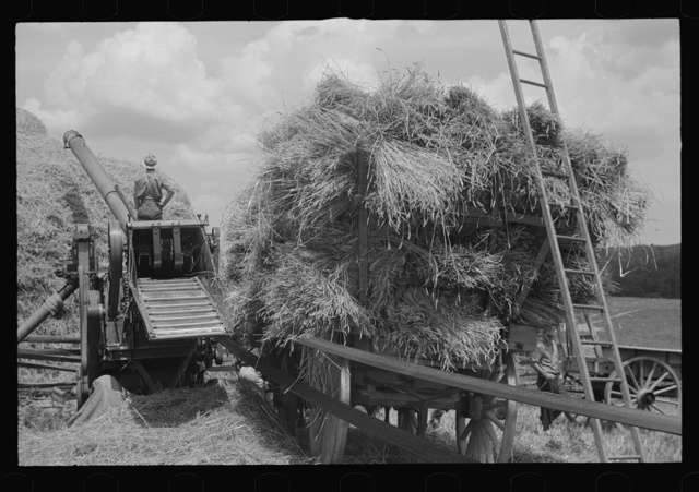 Threshing and baling, Brookeville, Maryland