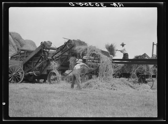 Threshing operations near Kewanee, Illinois