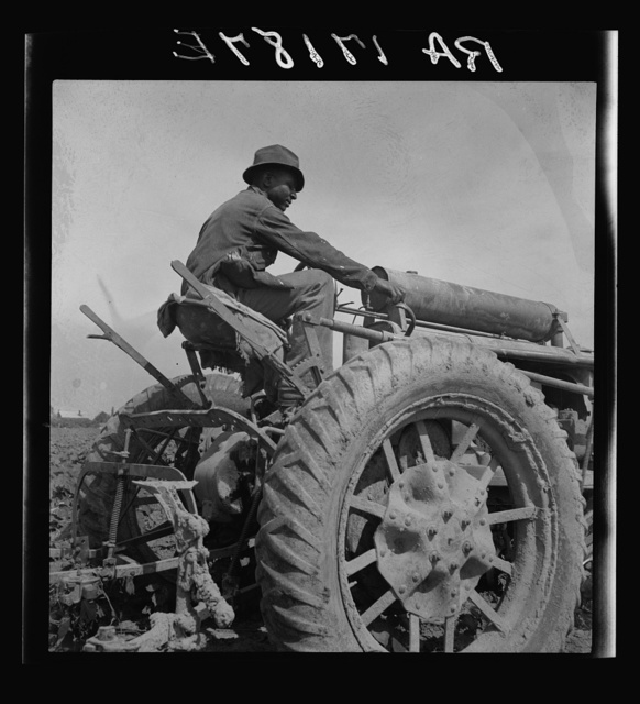 Tractor driver. Aldridge Plantation, Mississippi