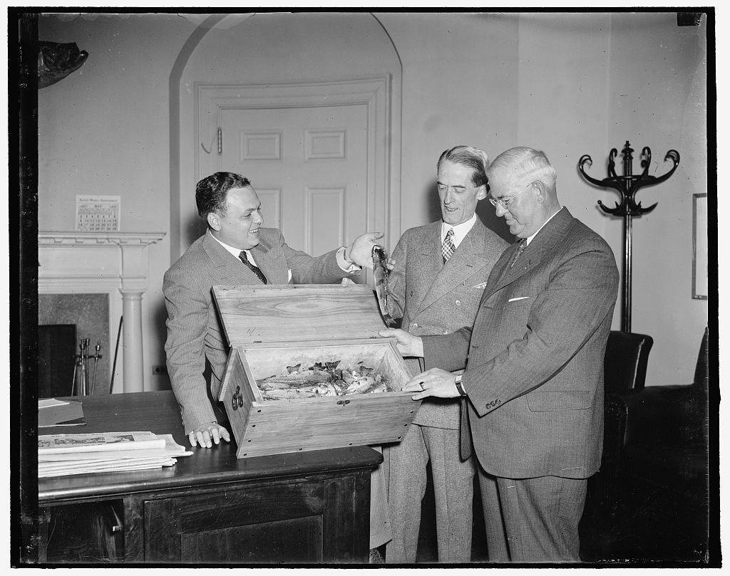 Trout flown to President Roosevelt. Washington, D.C., May 21. Erdorn W. Wood, 57 year old sportsman went to Mystery Pond, New Hampshire, swished 29 trout from its 75-foot dept and started to Washington and President Roosevelt with the catch. His newly constructed glass-bottomed boat drifted on the pond during a rain storm, while Wood, depending solely on fly-casting, hooked the Presidential meal. The trout measured from 9 to 16 inches. Left to right: Spencer Treherne, the pilot; Marvin McIntyre, Secretary to the President who received the fish for the President; and Erdorn Wood, the fisherman, 5/21/1937