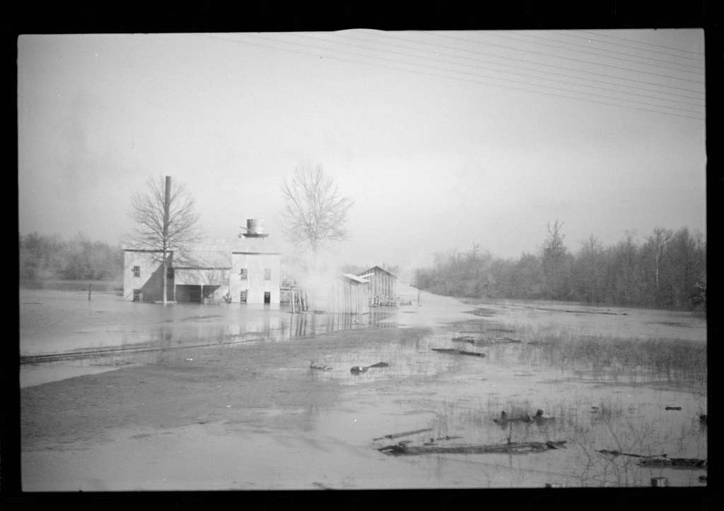 Untitled photo, possibly related to: View taken from train en route to Forrest City, Arkansas from Memphis, Tennessee during the flood