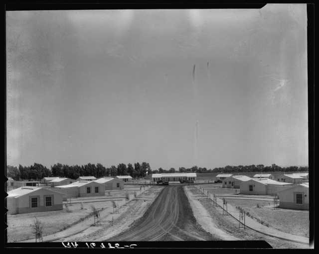 View of Resettlement Administration's part-time farms. Glendale, Arizona