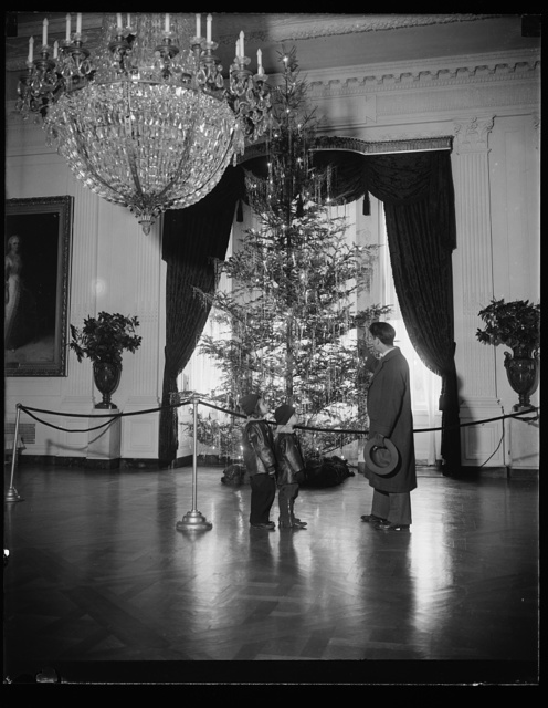 WHITE HOUSE CHRISTMAS TREE, WASHINGTON, D.C. DECEMBER 24. MANY VISITORS VIEWED THIS HUGE CHRISTMAS TREE SET UP IN THE EAST ROOM OF THE WHITE HOUSE FOR THE YULETIDE