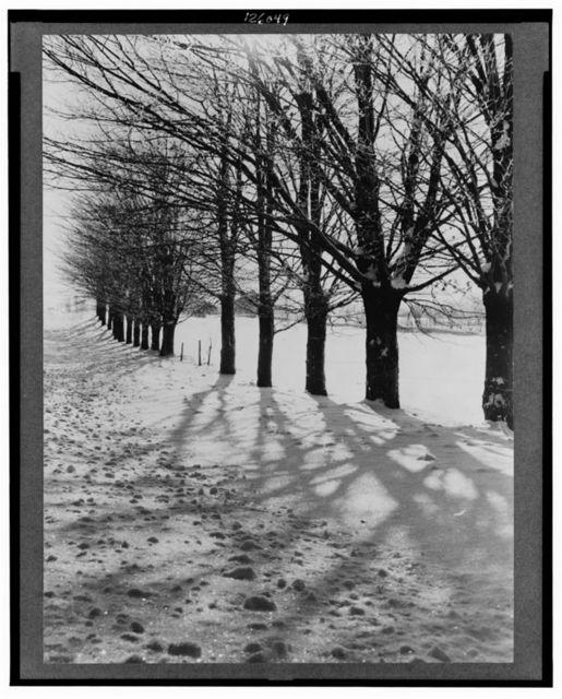 Winter scene. Oswego County, New York