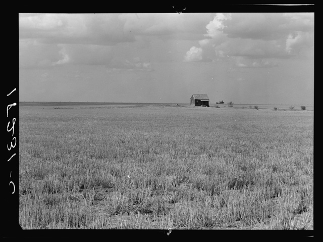 Abandoned farm home in wheat field near Gould, Oklahoma