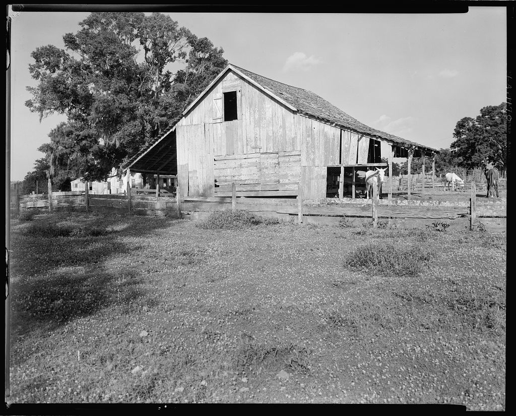 Barn, New Iberia vic., Iberia Parish, Louisiana