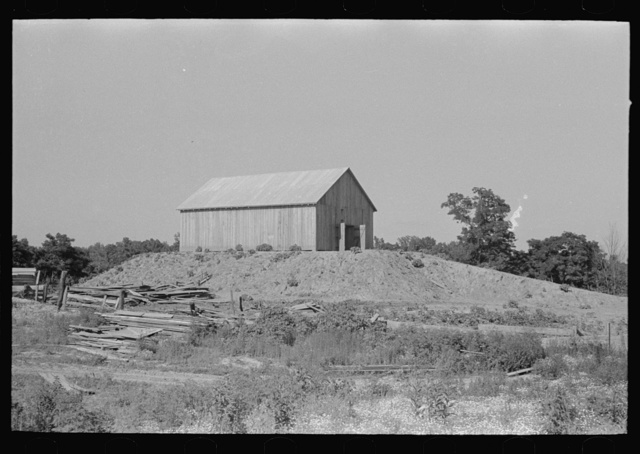 Barn on a hummock in Bird's Point, New Madrid Fuse Plug Levee District. Elevation is artificially made so as to be above flood level