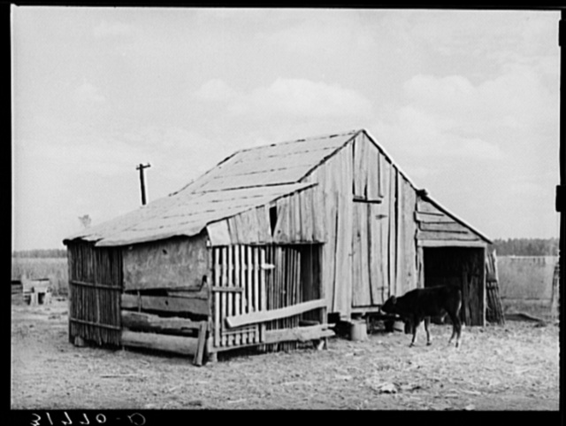 Barn on present farmstead of Emil Kimball, who will participate in tenant purchase program. Morganza, Louisiana