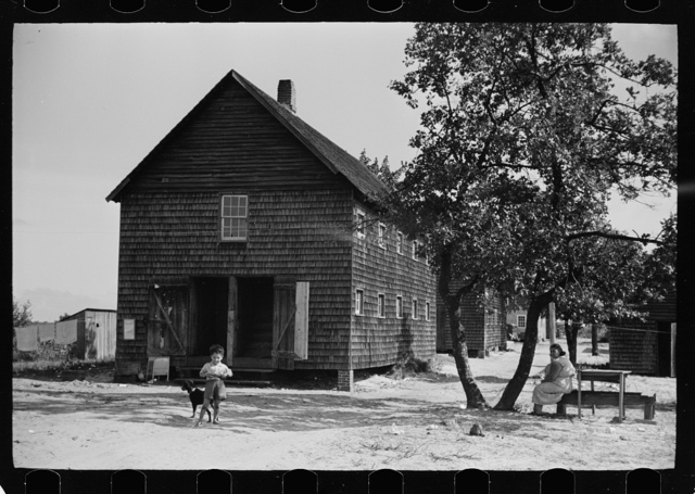 Barracks housing cranberry pickers, Burlington County, New Jersey