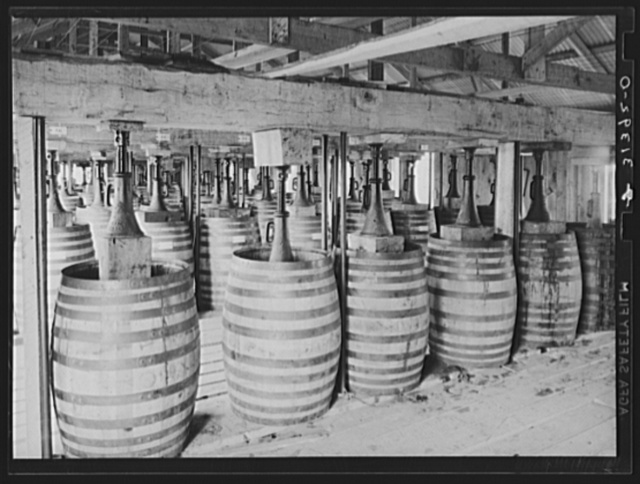 Barrels of perique tobacco during process of aging. Perique tobacco is raised in one parish in Louisiana, and this is the only place in the world where this tobacco is raised. Saint James Parish, Louisiana