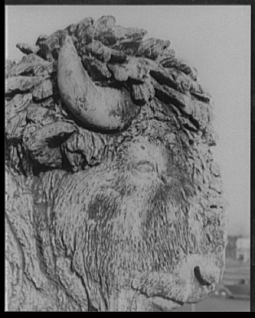 [Buffalo head, detail of George Washington statue group, head of Parkway, Philadelphia, Pennsylvania]