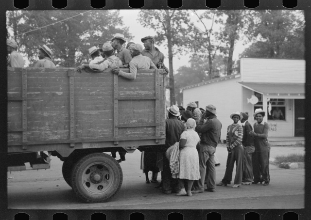Cotton pickers being loaded onto truck for transportation to fields, Pine Bluff, Arkansas