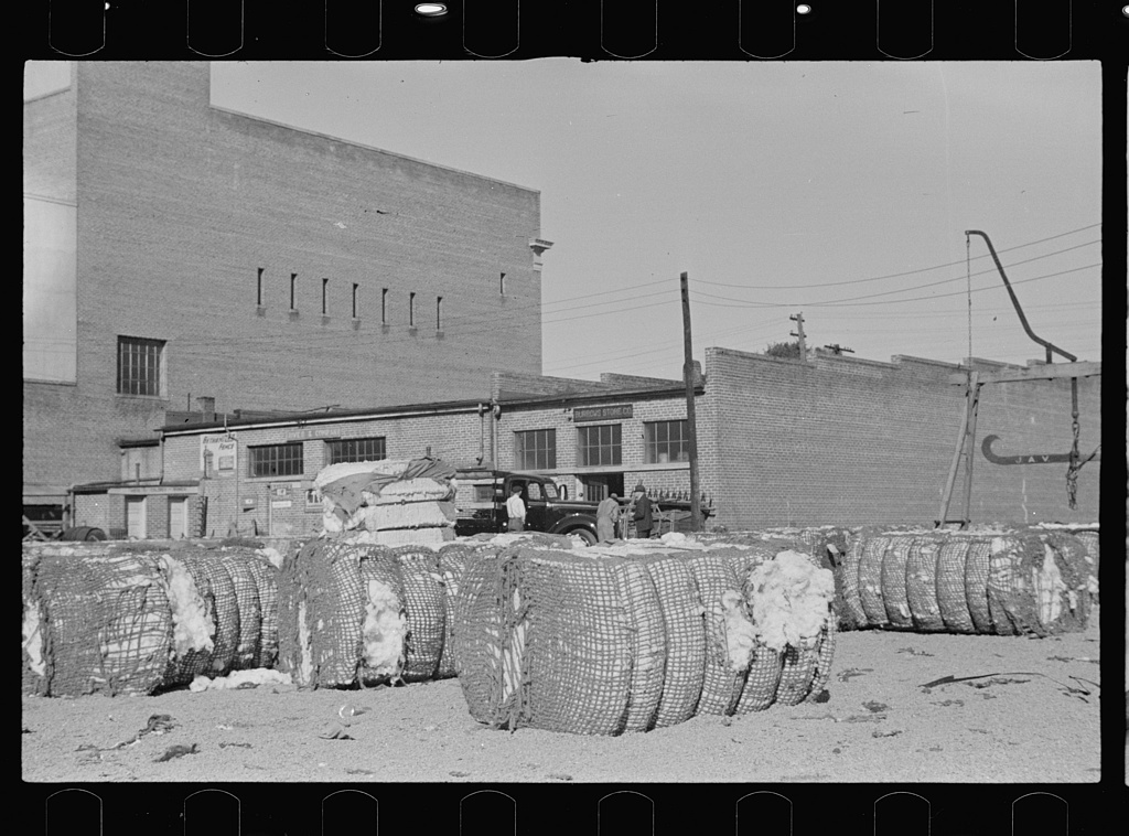 Cotton storeyard, Enfield, North Carolina