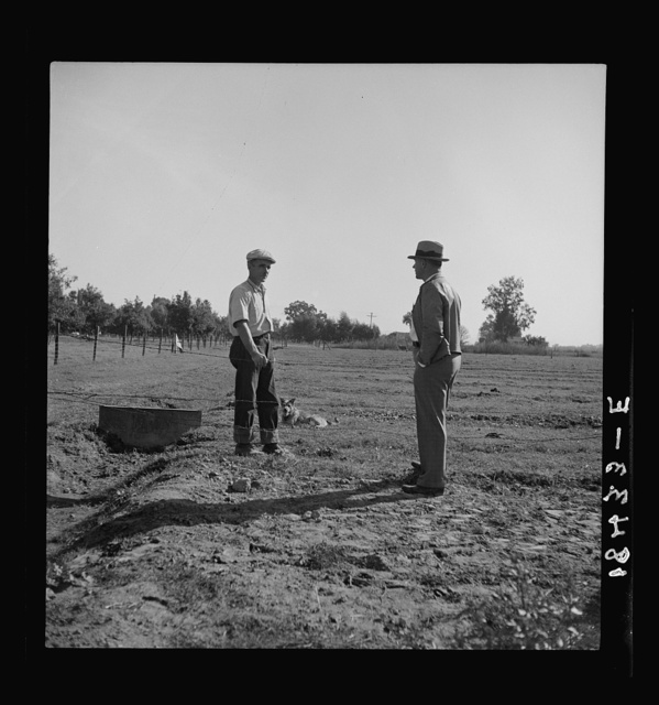 Farm Security Administration rehabilitation client showing county supervisor the pasture on his farm. Tulare County, California