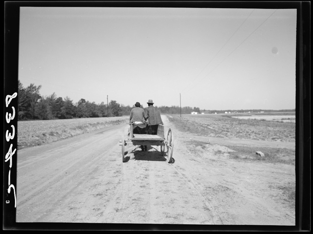 Farmer driving his mule team to community warehouse where he will get cotton seed and other supplies which have been bought cooperatively. Roanoke Farms, North Carolina