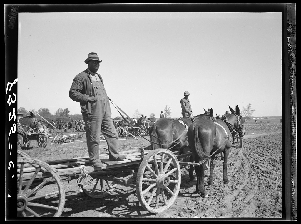 Farmer waiting for supplies which he is buying cooperatively at Roanoke Farms, North Carolina