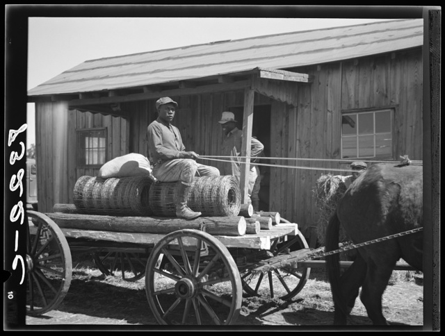 Farmer with cotton seed, fence posts and wire. These supplies were bought cooperatively at Roanoke Farms, North Carolina