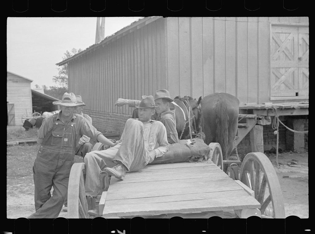 Farmers on Roanoke Farms, North Carolina