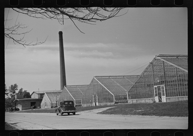 Greenhouses on Seabrook Farms, between Bridgeton and Vineland, New Jersey. Farms such as this have made a science of agriculture. This one is run by an agronomist and tractor drivers under him. Little ordinary farm labor is employed and that only seasonably