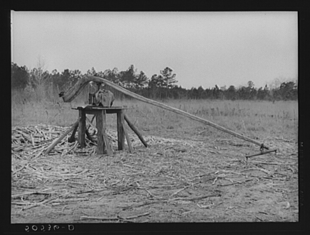 Grinding mill for sorghum cane made by Indian family near Summerville, South Carolina