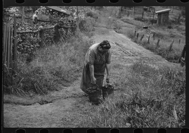 Hungarian miner's wife bringing home coal for the stove from slate pile. Coal camp, Chaplin, West Virginia