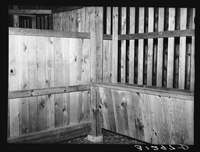 Interior of barn stall for mules. Southeast Missouri Farms