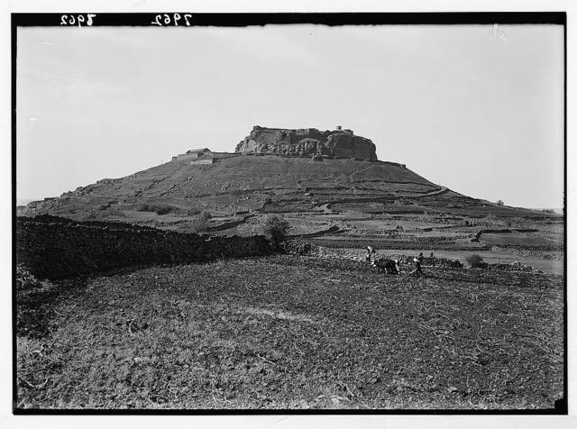 Jebel el-Druze & Hauran. Salkhad. The castle hill from the north with plow man in distance