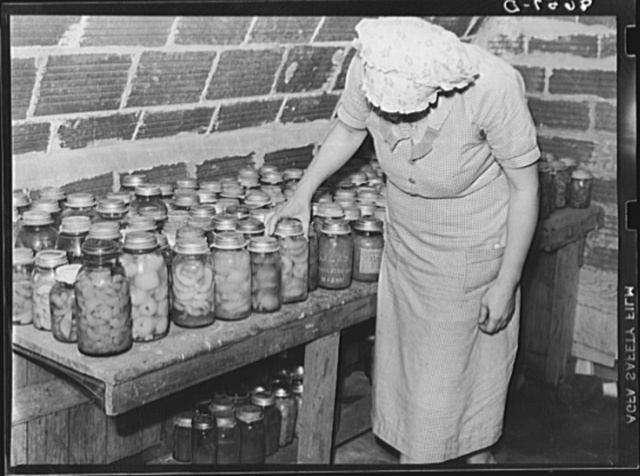 Lancaster County, Nebraska. Canned goods in the storage cellar of a Farm Security Administration rehabilitation client