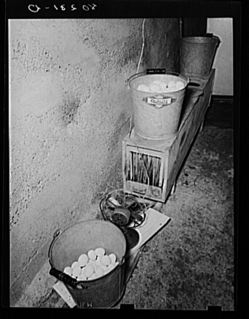 Lancaster County, Pennsylvania. Eggs on the homemade moisturater in the cellar of the chicken house on the Enos Royer farm. A long box contains a tray of water, upright pieces of blotting paper which act as wicks, and a fan which forces air into one end of the box and up through holes on the top of the box, into the screen-bottom pails which contain the eggs. The eggs go to market twice a week
