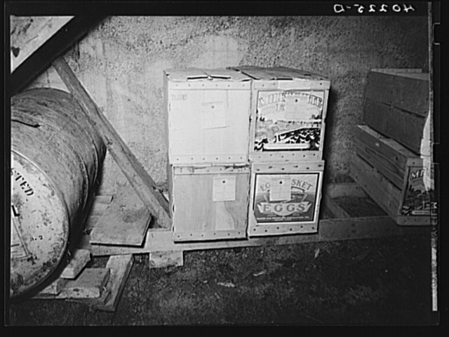 Lancaster County, Pennsylvania. Eggs, which have been graded for shipment, stored in the chicken house on the Enos Royer farm