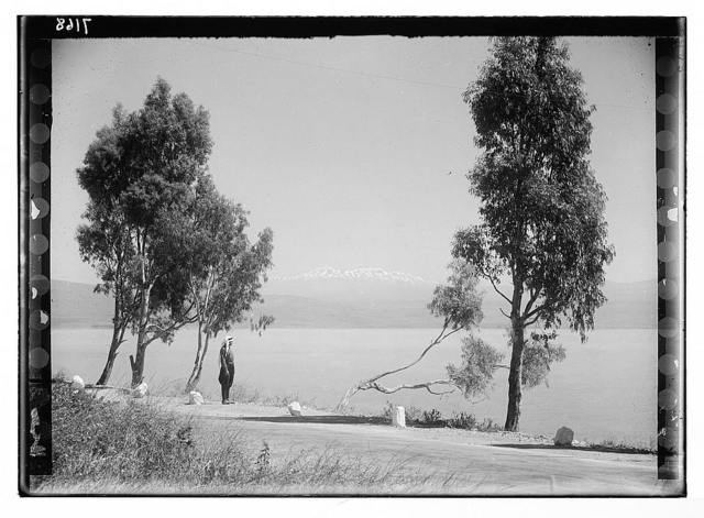 Lido, Tiberias, & Mt. Hermon. Sea of Galilee & Hermon from Semakh Road