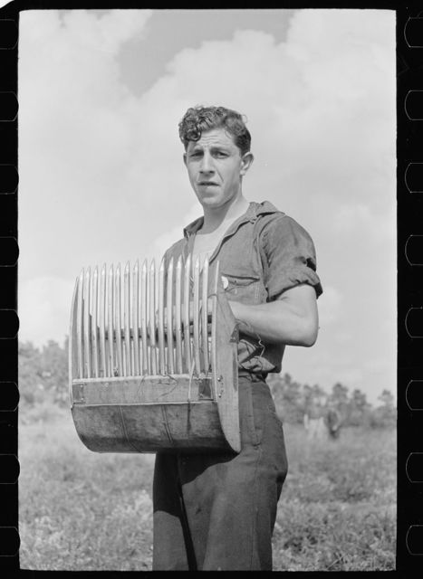 Man with cranberry scoop, Burlington County, New Jersey