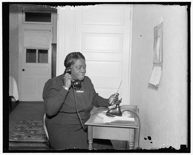 Mary Bethune, Chief of the Negro Section NYA