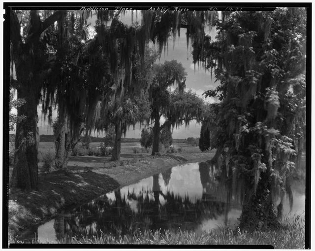 Middleton Place, Ashley River vic., Dorchester County, South Carolina