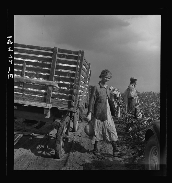 Migratory cotton pickers have stopped working because it started to rain.  Kern County, California