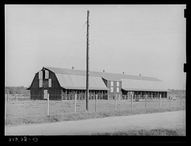 Mule barn. Lake Dick Project, Arkansas