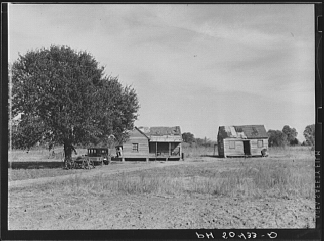 Negro homes near Summerville, South Carolina