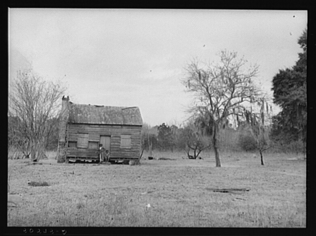 Negro shack near Summerville, South Carolina