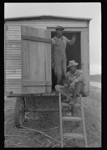 Negro sitting in wagon which is moved in the fields to be used for protection from rain, sugarcane fields, New Iberia, Louisiana